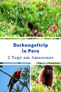 Dschungeltour Peru
