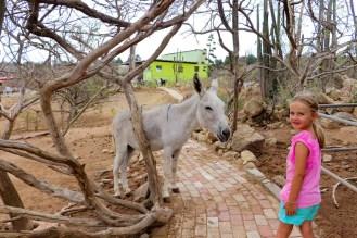Eselreservatum Bringamosa Aruba