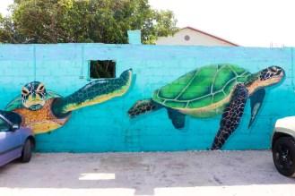 Schildkröten Streetart San Nicolas