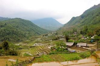 Blick auf die Reisterrassen von Sin Chai