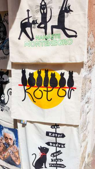 Souvenir Katzen Kotor