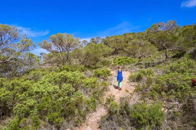 Schmaler Fußweg führt zu Arc de Pedra