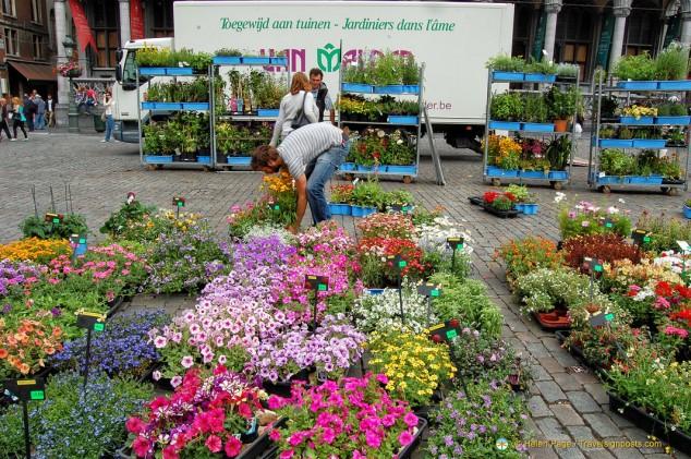 Grand-Place Flower Market