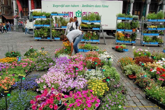 Grand-Place Flower Market
