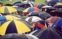 Classic British summer scene with umbrellas