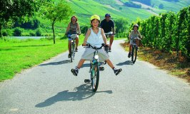 Cycling Holidays in Germany: Cycling in the Mosel Region