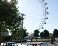 Classic-Mini-Cooper-London-tour