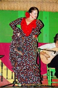 Flamenco at Palacio Andaluz