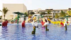 splash safari pelican bay travelsmart vip