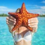 Saona Island Featured Image Starfish TravelSmart VIP