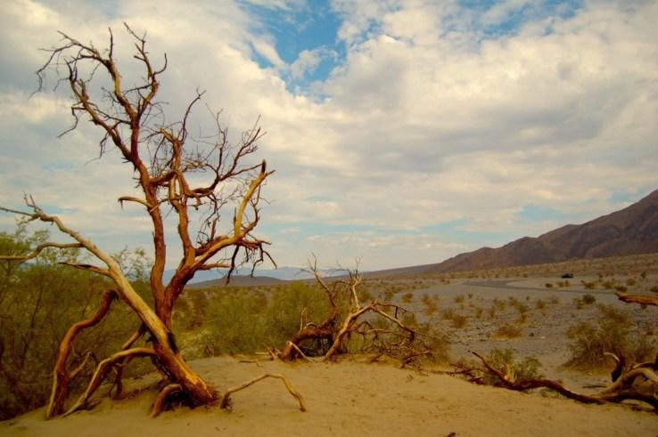 Mesquite Sand Dunes, Death Valley, CA