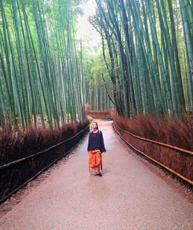 viaggio in Giappone fai da te