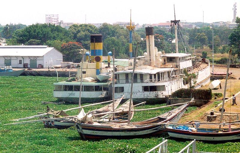 Kisumu Harbour Hyacinths