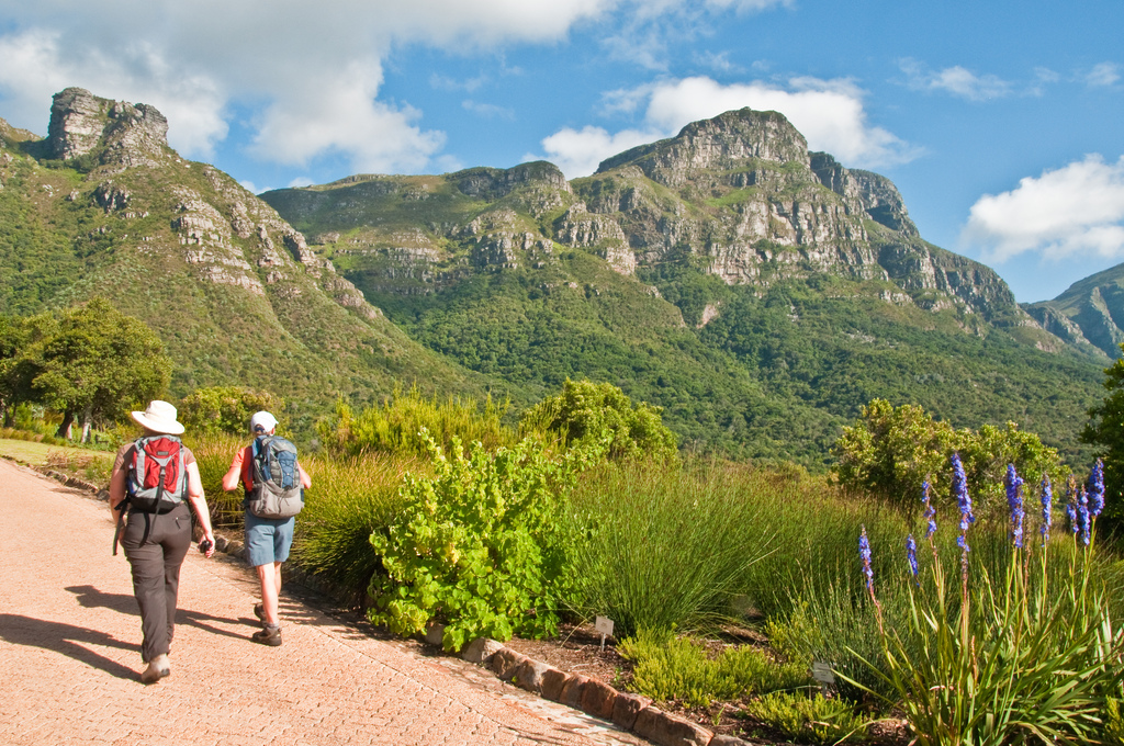 Hiking up Skeleton Gorge from Kirstenbosch Gardens.
