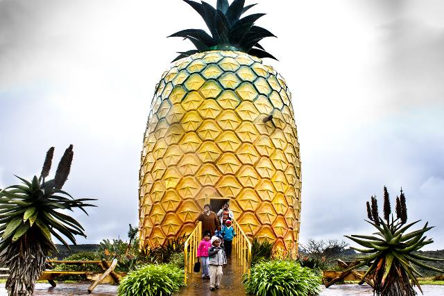 Bathurst Big Pineapple