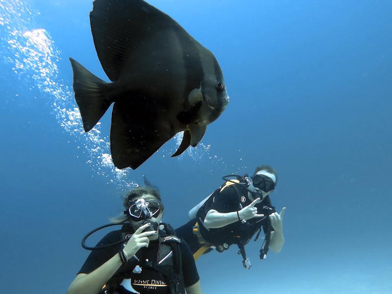 best-time-to-visit-phuket-diving