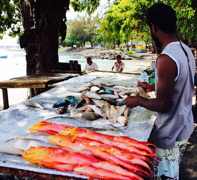 fish market mauritius