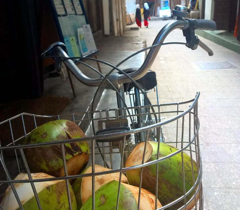 coconuts zanzibar