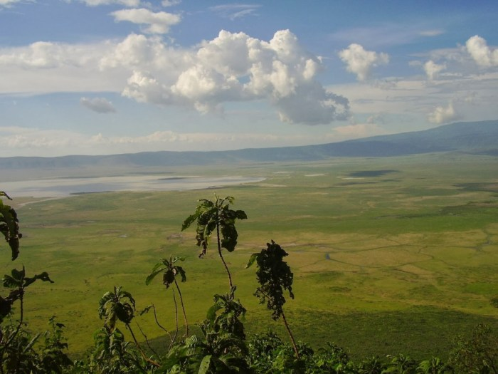 Il cratere di Ngorongoro visto dall'alto