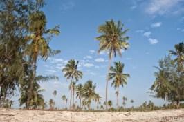 I villaggi vicino alla costa di Pemba