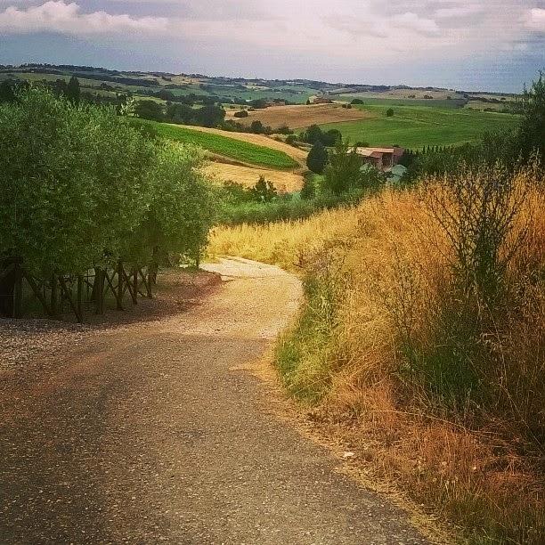 Vista sulla campagna dal Fontanaro