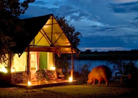 Mvuu Camp , Liwonde National Park
