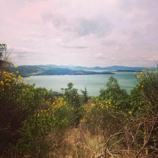 Trekking al Lago Trasimeno