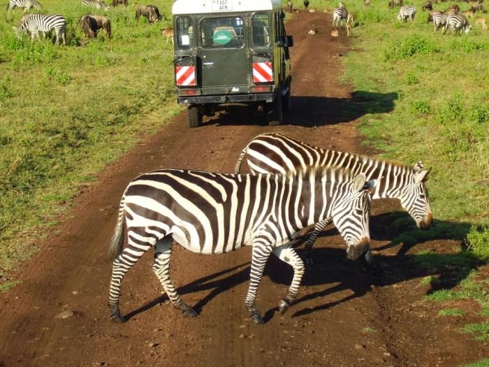 tanzania-travelstories