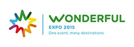 logo-wonderful274x961