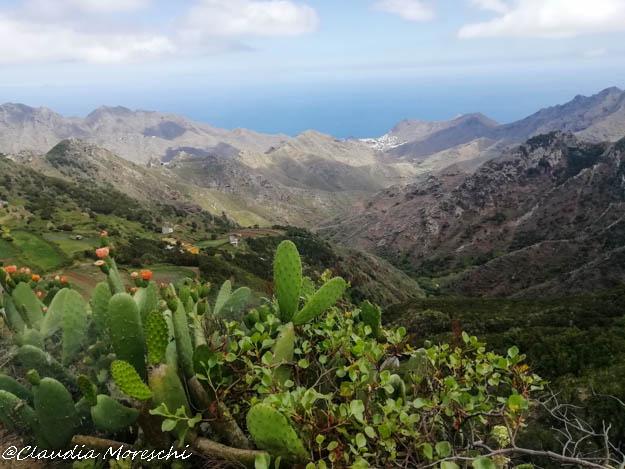 Trekking nei Monti Anaga