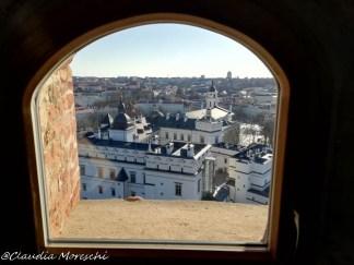 Vista dalla torre di Gediminas