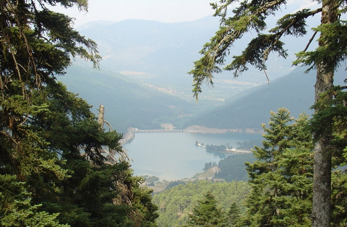 Guest House Alexiou ορεινή κορινθία δεντρόσπιτο εκπληκτική θέα στη Λίμνη Δόξα