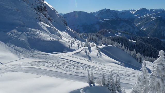 skiing-71473_640