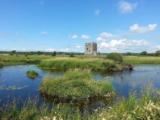 threave castle view.
