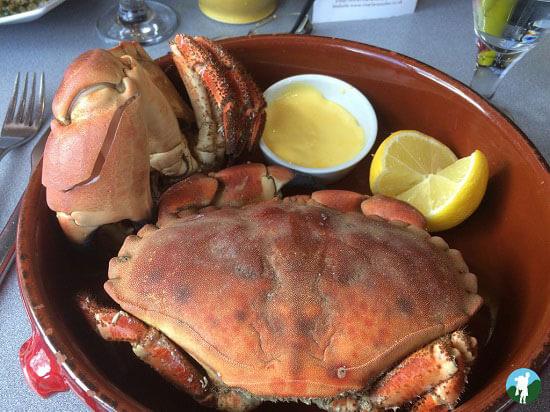 scottish highland road trips loch leven crab