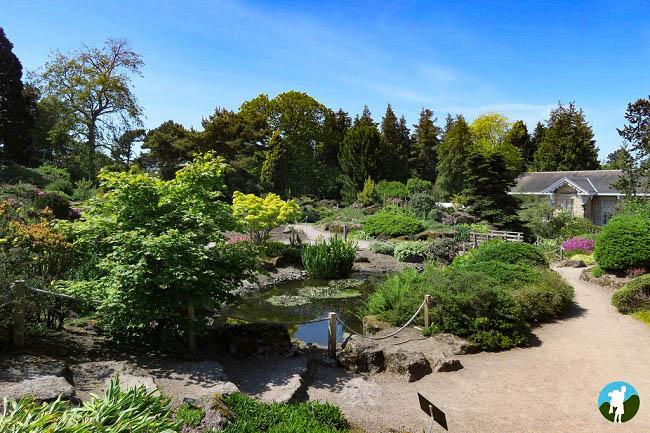 fountain court apartments botanics