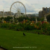 Paris Festival