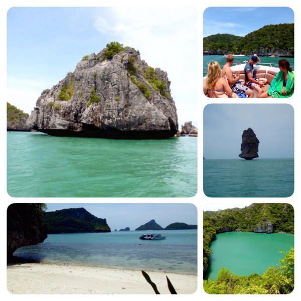 Exploring Koh Samui Marine Life