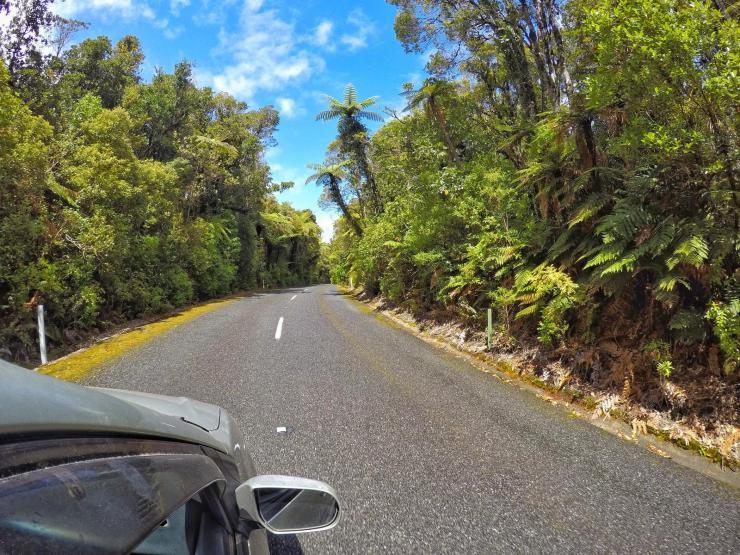 Neuseeland Road Trip Highlights Tipps Northland