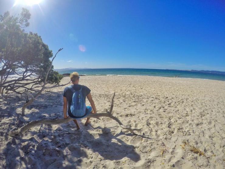 Highlights und Instagram Geheimtipps in Coromandel, Neuseeland