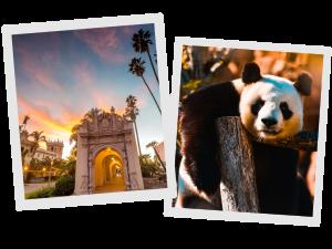 Balboa Park and San Diego Zoo   San Diego Travel Guide