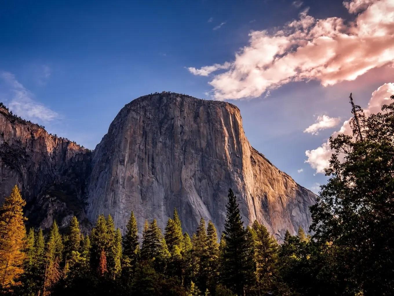 El Capitan Meadow | Yosemite National Park Attractions