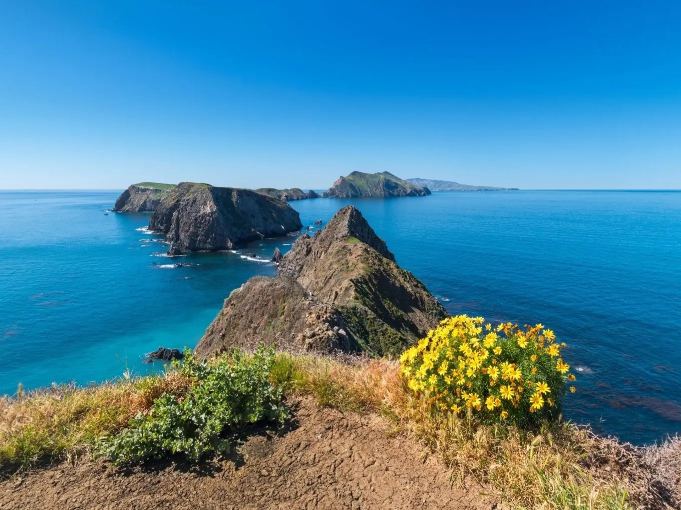 Channel Island National Park | California National Parks
