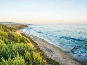 Crystal Cove State Beach | Best Beaches in California