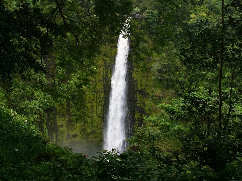 Hamakua The Island of Hawaii