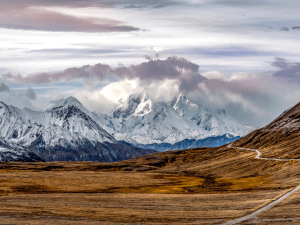Denali National Park Travel Guide | Denali National Park Travel Guide