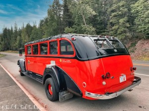 Guided Tours In Glacier National Park