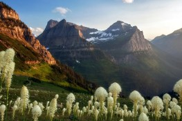 Highline Trail | Haystack Pass | Glacier National Park
