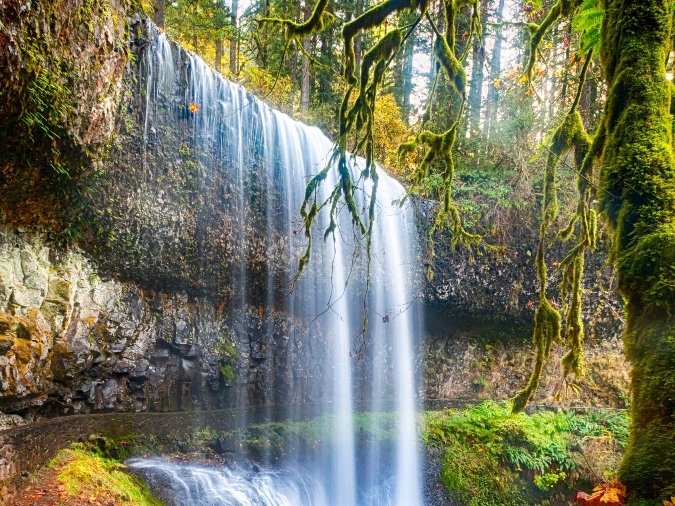 Lower South Falls | Silver Falls State Park