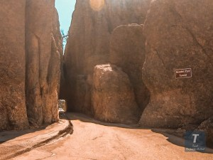 Custer State Park - Needles Highway